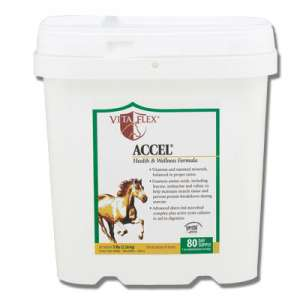 Accel Vitamin & Mineral Supplement