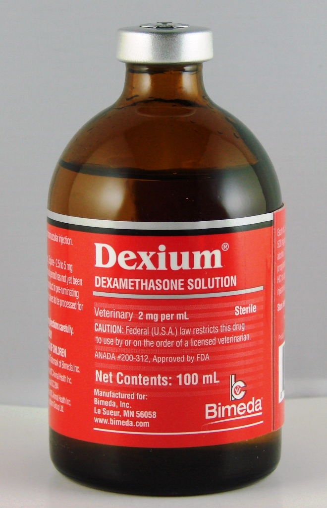 Dexium 2 mg Injectable