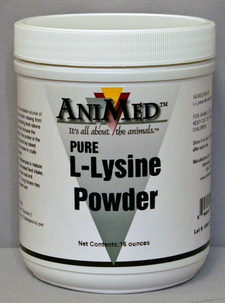 AniMed L-Lysine Powder Pure