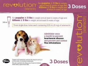 Revolution for Cats (selamectin)