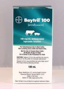 Baytril 100 mg/ml Injectable Solution