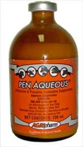 Penicillin G (Aqueous)