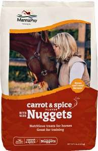 Carrot & Spice Nuggets